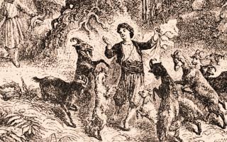 la leggenda di Kaldi e delle capre salterine