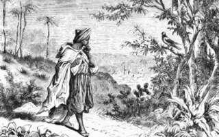 la leggenda di Omar che, a Moka, iniziò a tenere svegli i Dervisci con il caffè