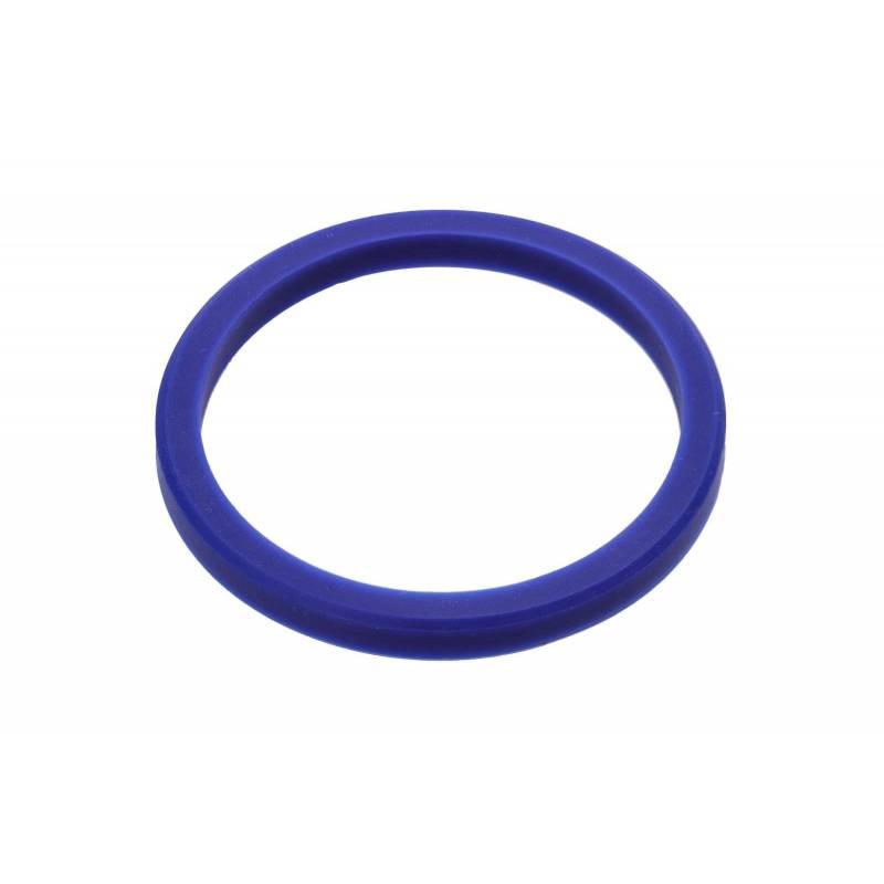 BLUE GASKET
